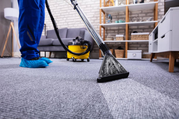 Carpet Cleaning Tips You Need To Learn Now.